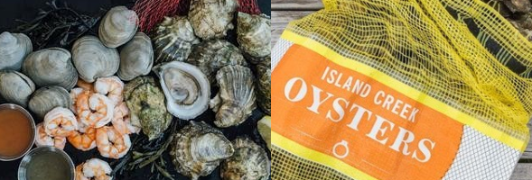 oyster_banner.png