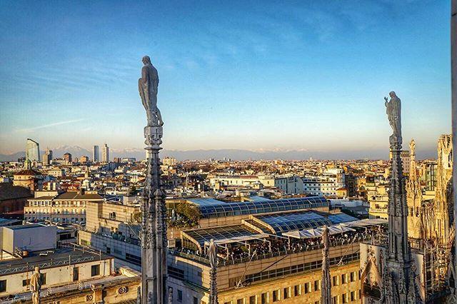 #LocalPigeon #Milan #Italy #sonya7RII #sonyimages #beautifuldestinations