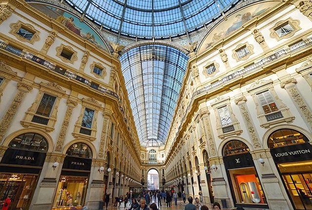 #LocalPigeon #sonya7RII #sonyimages #Milan #Italy