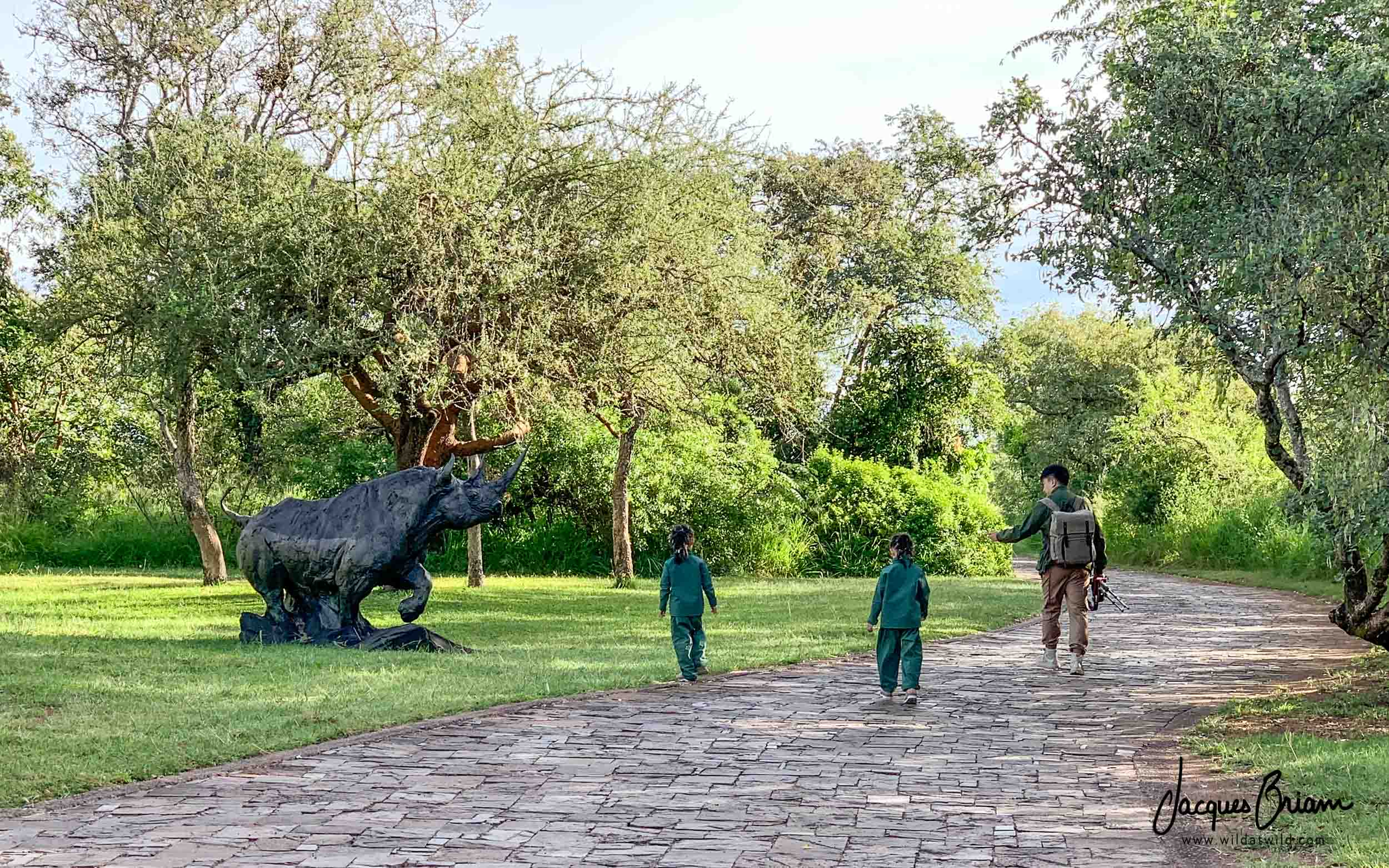 During their first trip to Africa, two young girls walk with their father to experience their only rhino sighting.