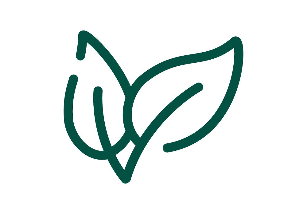 leaf-icon-green-web.jpg