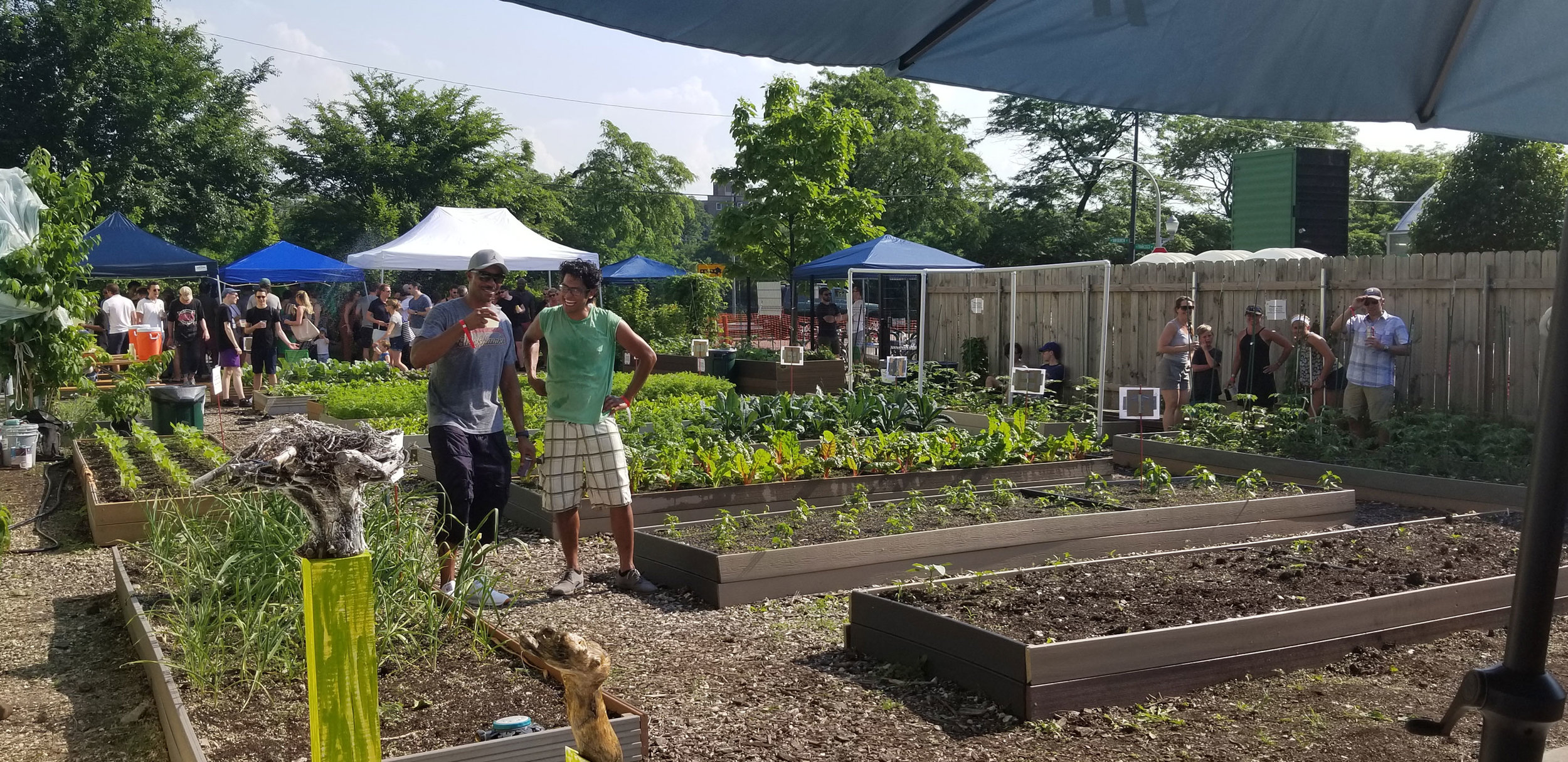 Garden shot from Herban Produce's Farm-To-Table event in 2018.