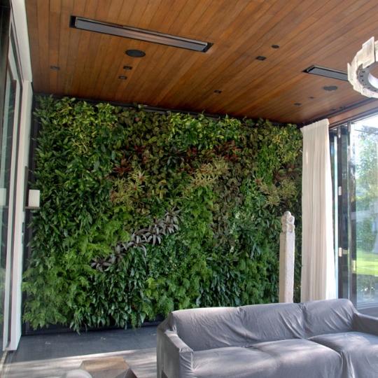 Chris Bribach, Plants On Walls, Beverly Hills home, Florafelt System