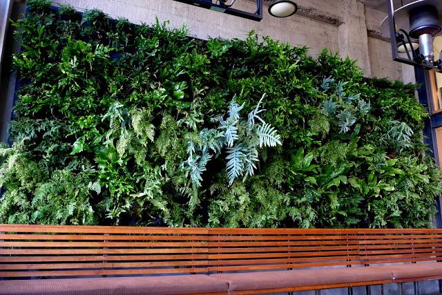 Urban Bistro Burlingame Vertical Garden by Chris Bribach of Plants On Walls using the Florafelt System.