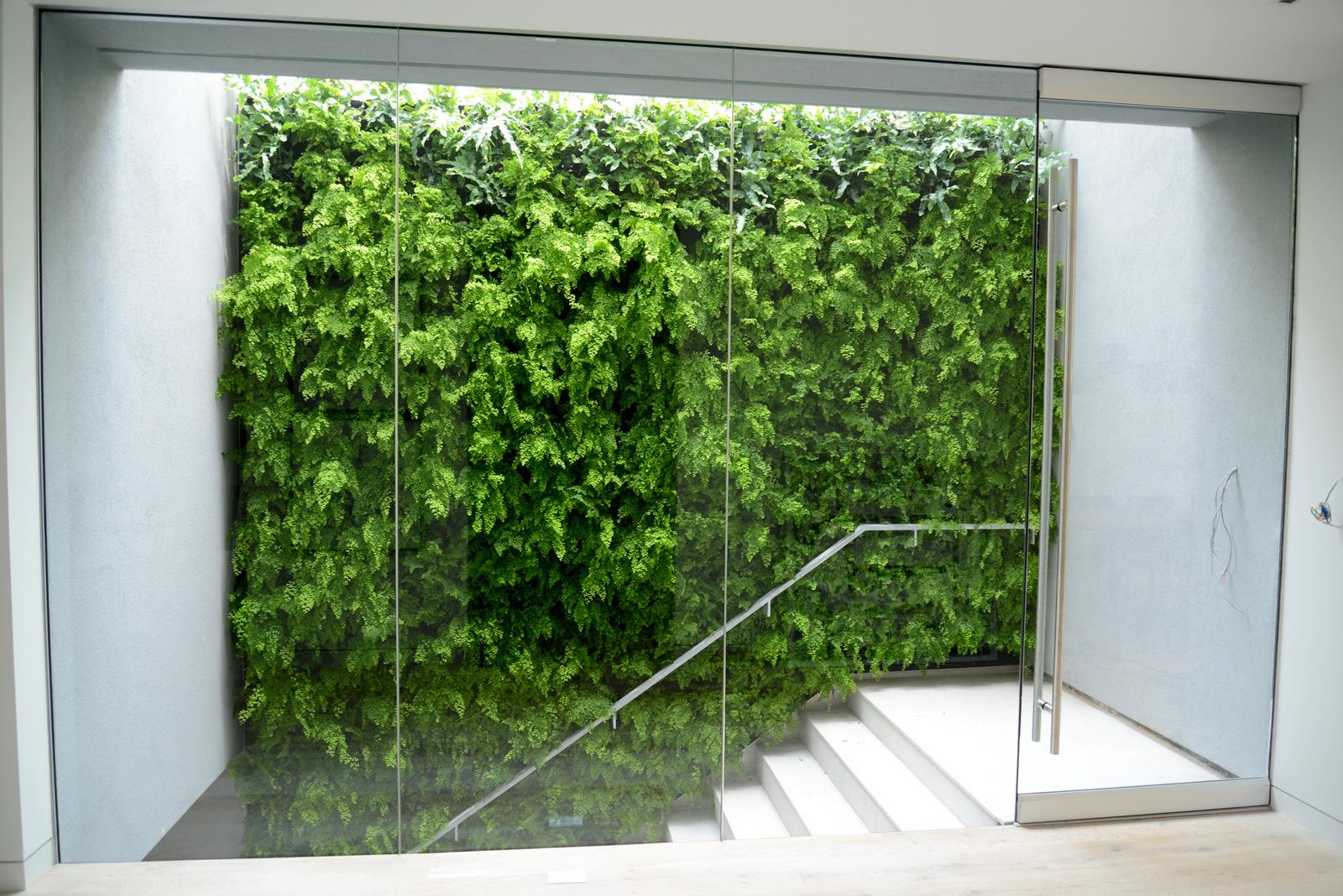 Chris Bribach, Plants On Walls, Artthaus, Florafelt System