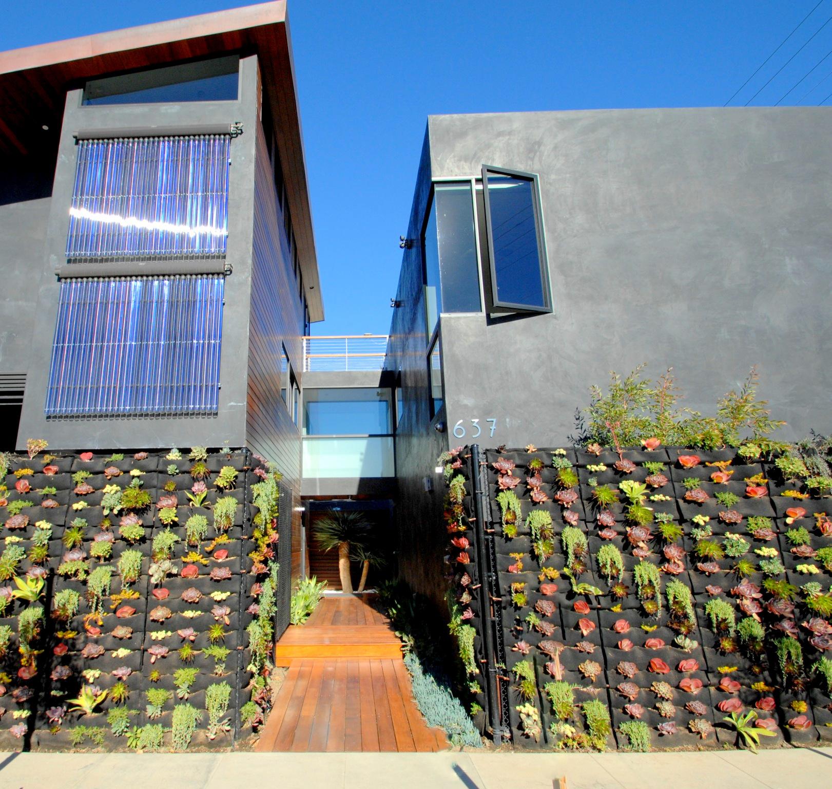 Dany Rojany of Bella Casa in Venice Beach, California. Florafelt System