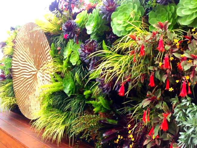Davis Dalbok and Brandon Pruett, Living Green, Florafelt System