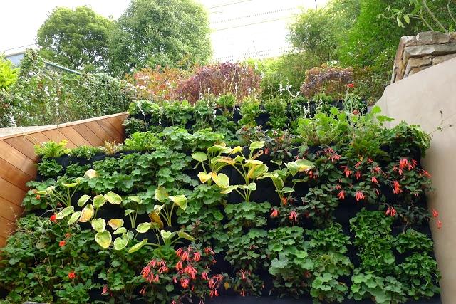 Tom  Brumfield  , Siteworks    Landscape  , Berkeley, California. Florafelt System