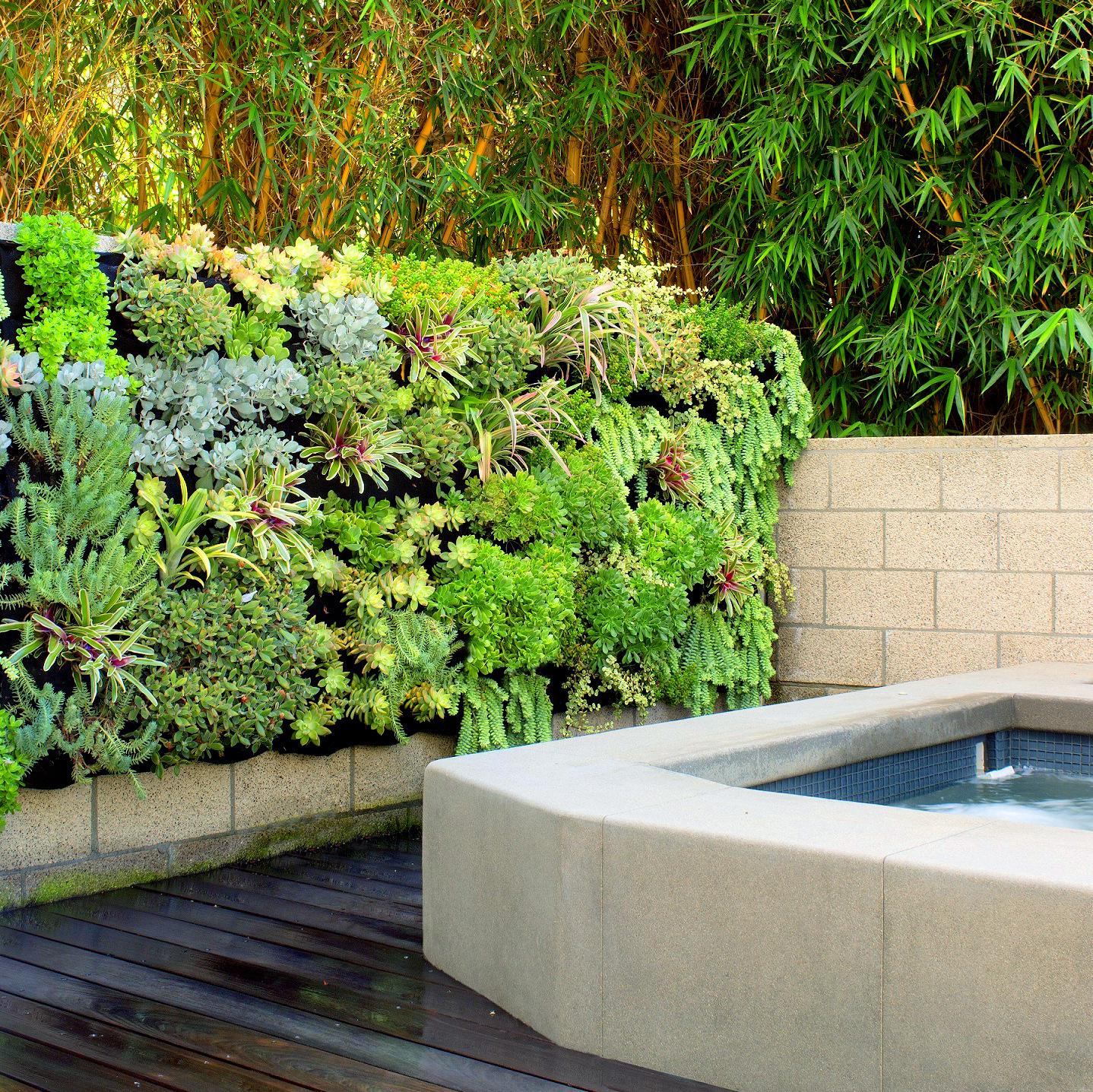 Succulent Spa Vertical Garden — Florafelt Living Wall Systems