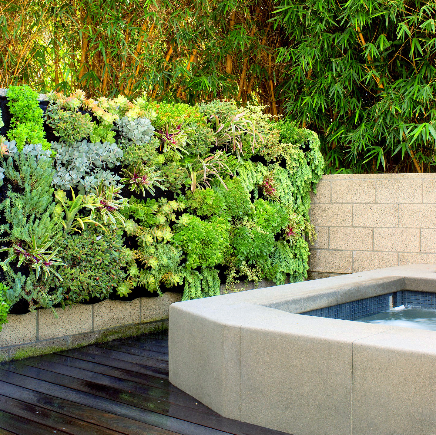 Kerry Bauer, Greenscaped Buildings San Diego. Florafelt System