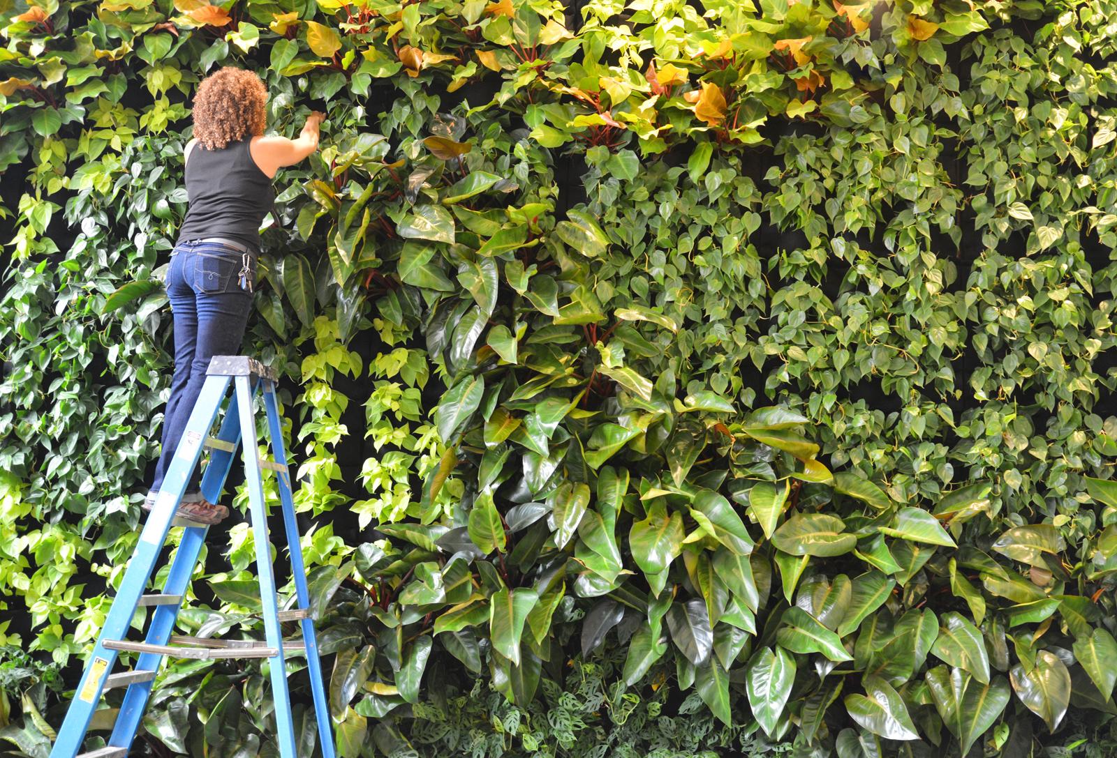 Julie Duvivier, Duviv Gardens, Florafelt System