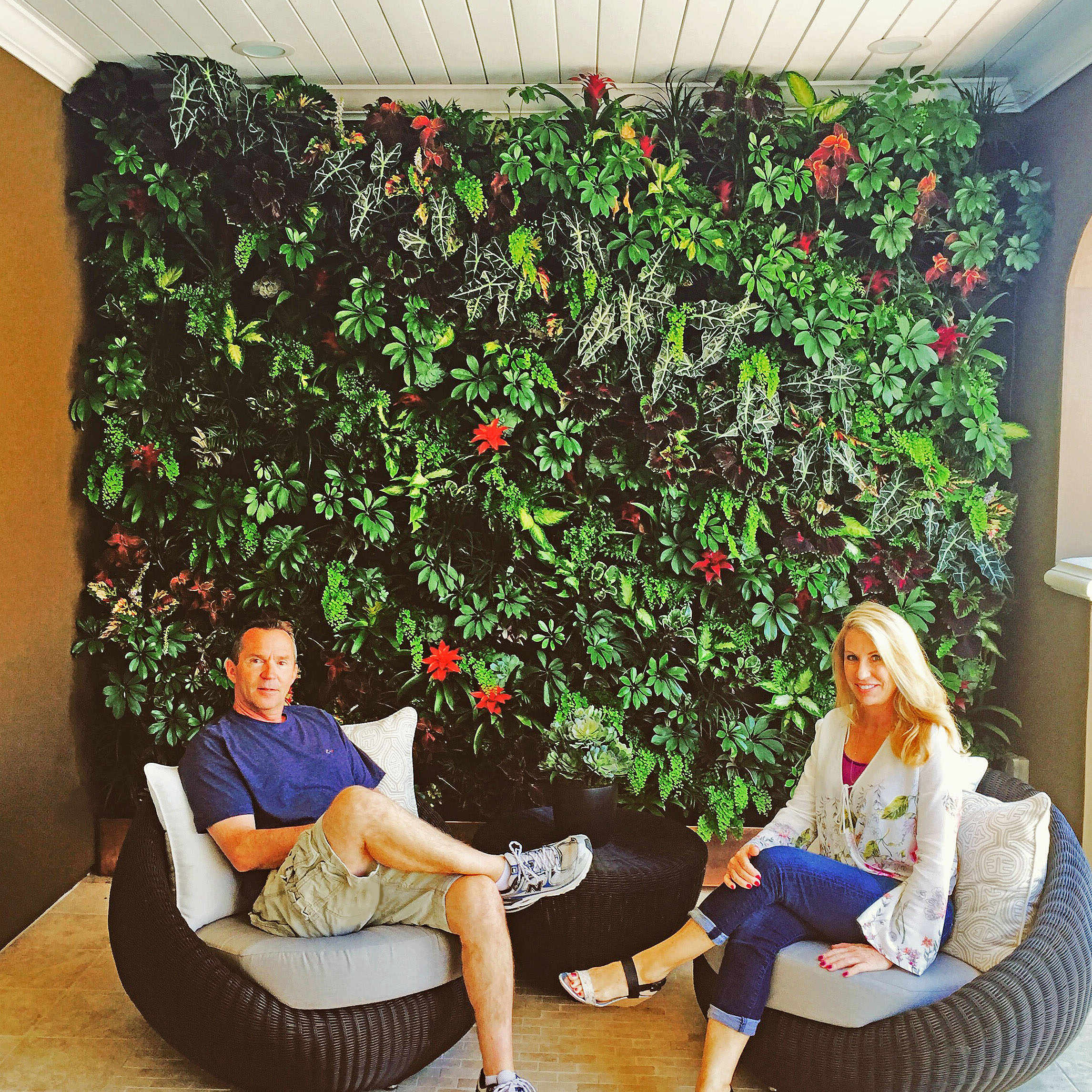 Living Wall by MikeMcCall Landscape Incfor Toll Brothers Model Homes in San Ramon, California. Florafelt Vertical Garden System.