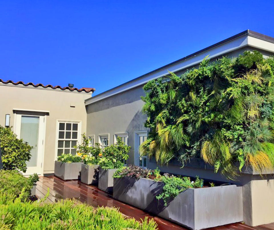 Linsey-Graves-Living-Green-Design-Florafelt-Pro-Vertical-Garden-7.jpg
