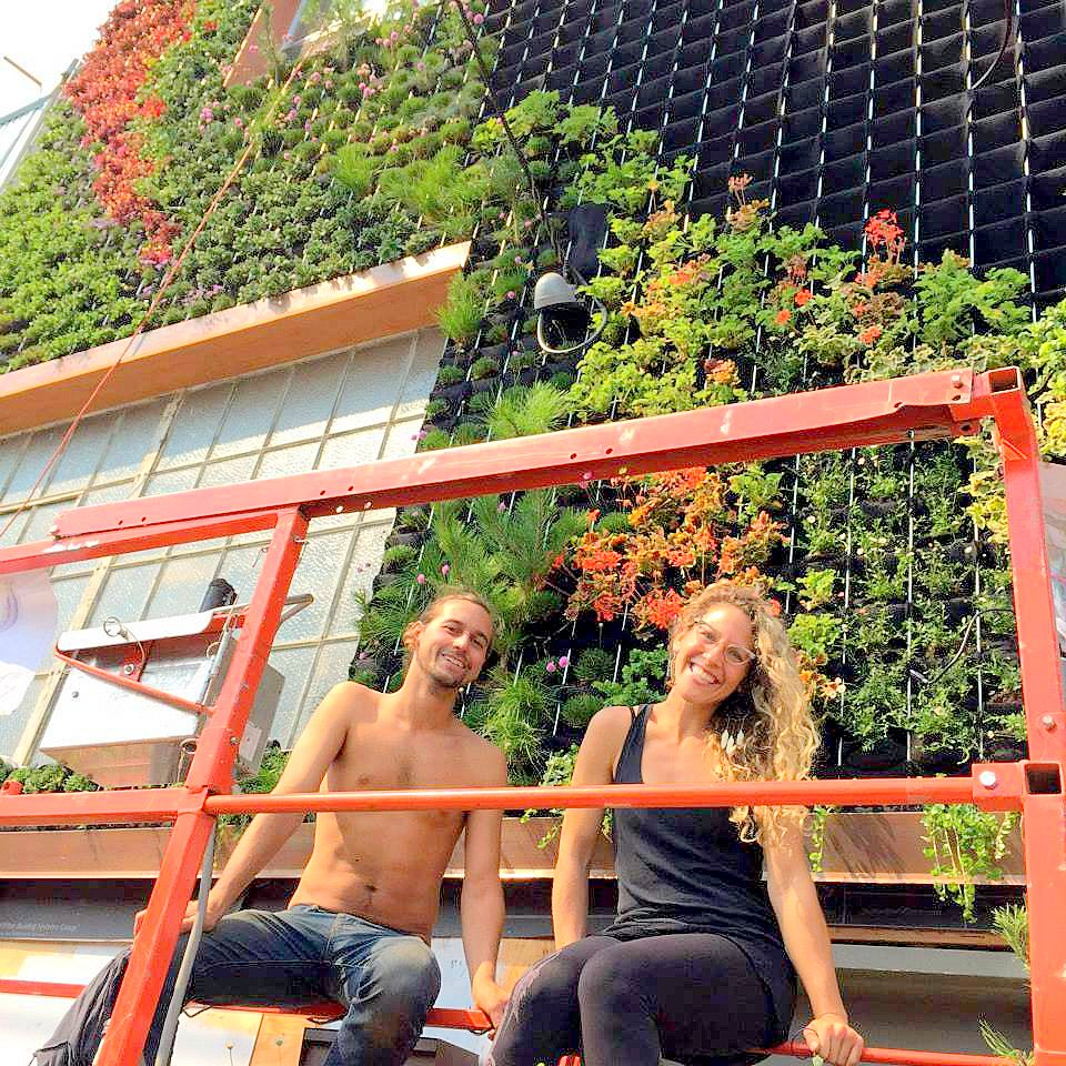 Amanda Goldberg of Planted Design works with Brandon Pruett of Living Green Design to transform an industrial building into a living facade.