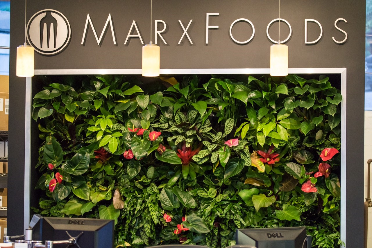 Marks Foods reception desk vertical garden by by Rebecca Sheedy, Floraform Design Seattle, framed Florafelt Compact Kits.