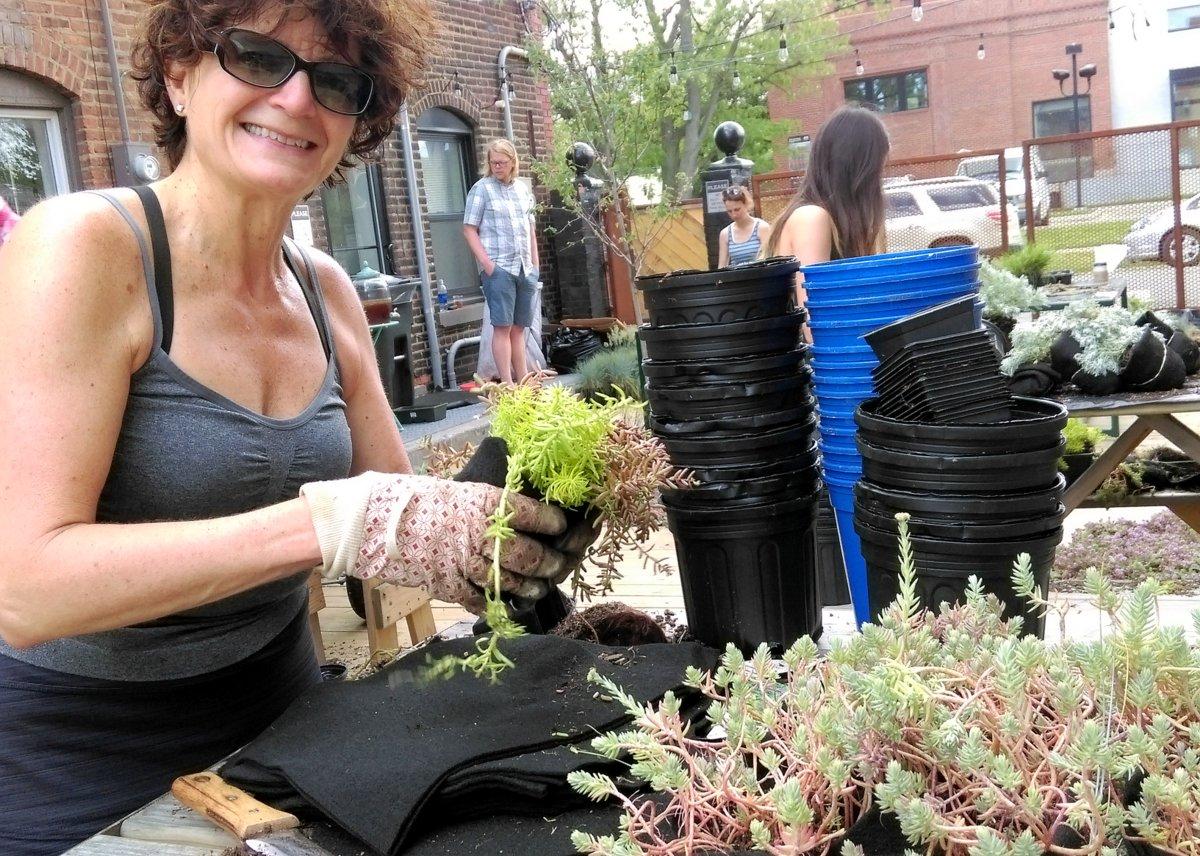 Community Volunteers. Hingetown Cleveland Living Wall. Florafelt Vertical Garden System.