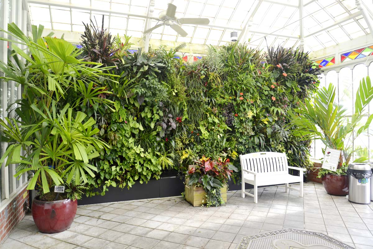 San Francisco Conservatory of Flowers.Florafelt Vertical Garden System