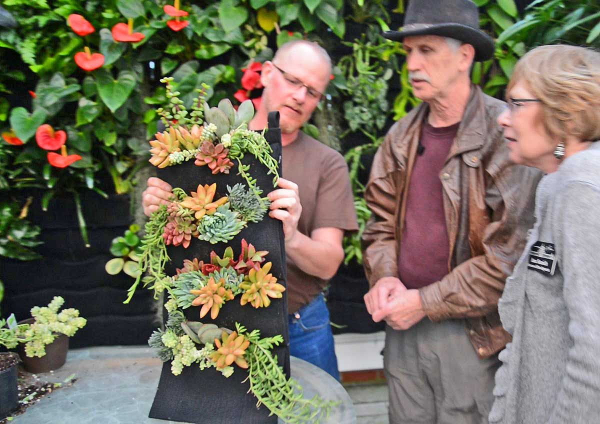 Chris Bribach demonstrates how to create a simple succulent Florafelt vertical garden at the Conservatory of Flowers.