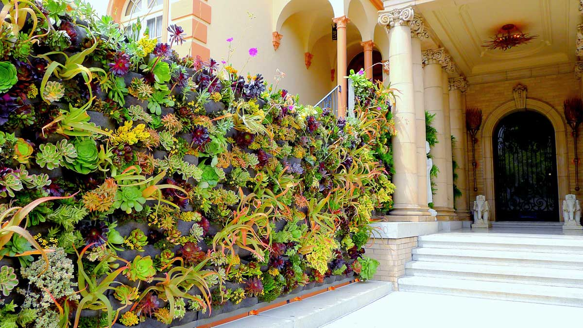 Davis Dalbok, Living Green Design. Decorator Showcase 2012. Florafelt Vertical Garden System.
