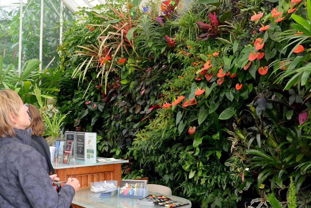 San Francisco Conservatory of Flowers. Florafelt Vertical Garden System.