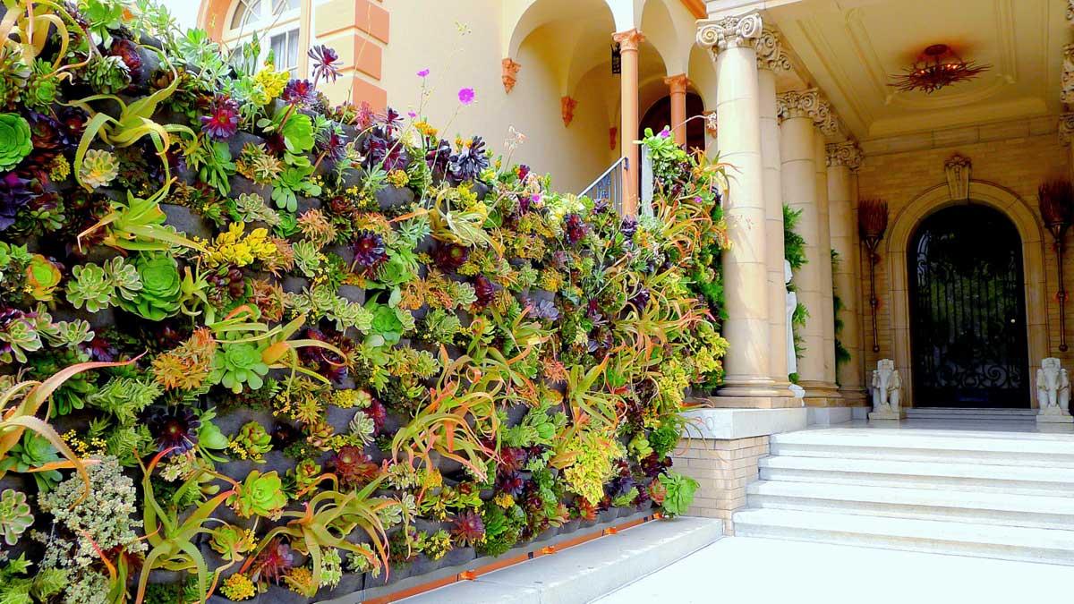 Davis Dalbok,Living Green Design.Decorator Showcase 2012.Florafelt Vertical Garden System.
