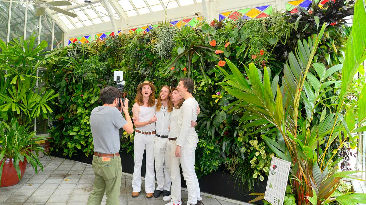 Hibbity Dibbity band's photo shoot in July 2016 at the Conservatory of Flowers, San Francisco. Florafelt Vertical Garden.
