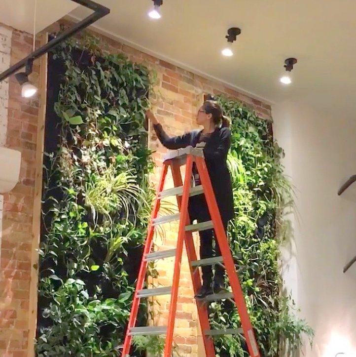 Designer Hande Ersoy. Florafelt Vertical Garden Planters. Untitled by Flaunt Boutique, Toronto.