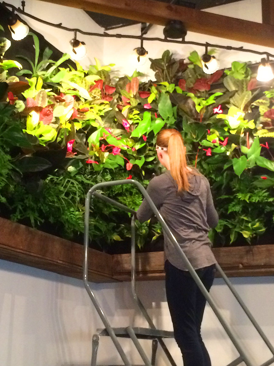 Florafelt-Vertical-Garden-System-Nathan-Brown-The-Turf-Jockeys-IMG_1130.jpg