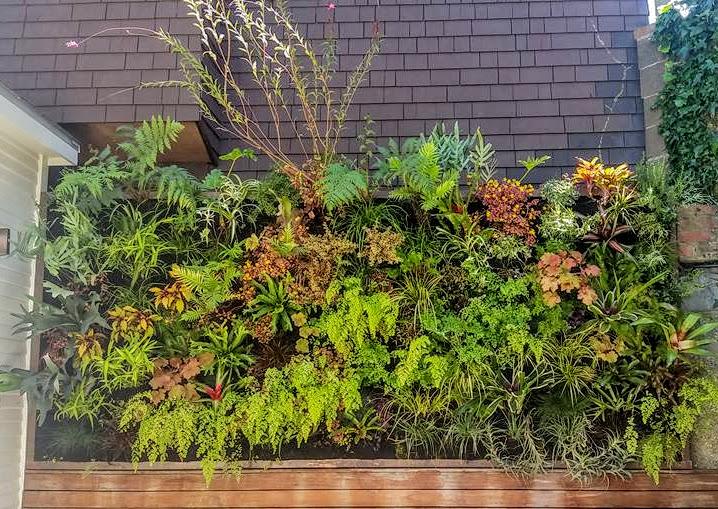 Florafelt Vertical Garden by Benjamin Heim of Groundcover Landscaping