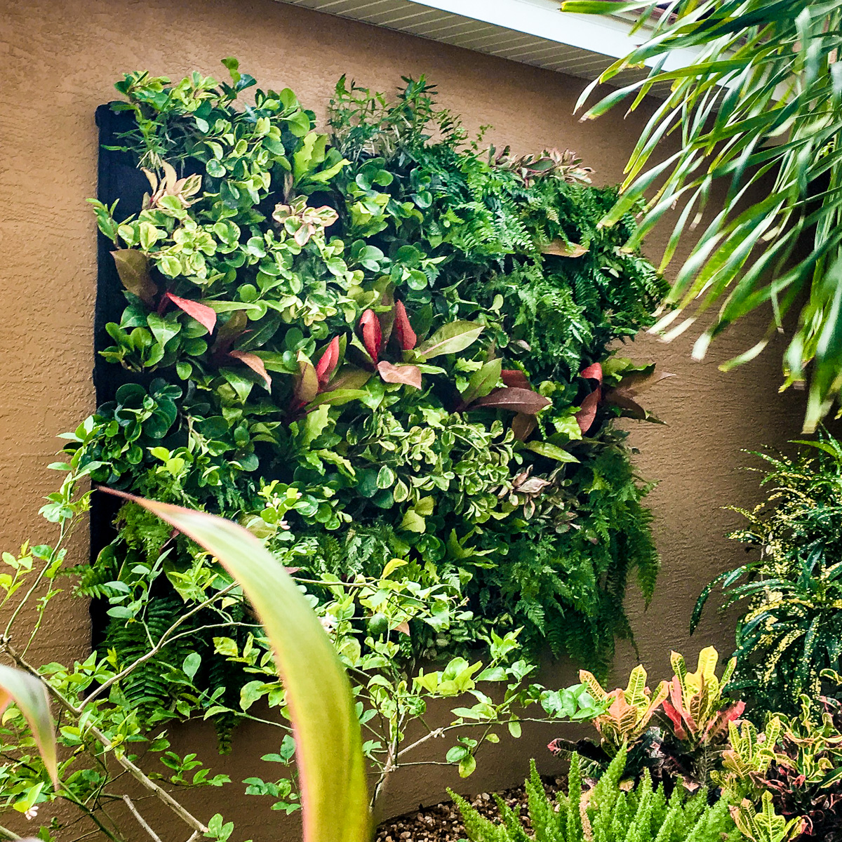 A Florafelt vertical garden by Seth Stottlemyer of Oasis Gardenscapes welcomes visitors to this Florida residence.