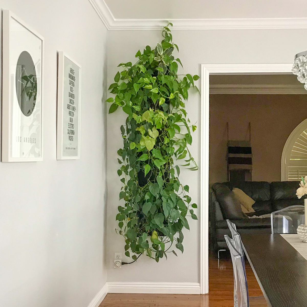 Florafelt Compact Vertical Garden Kit by Tucker Warner Design for a Culver City Los Angeles home.