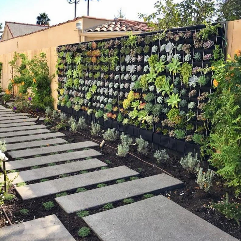 Florafelt Pro System Living Wall by Alan Dunn Landscape Los Angeles.