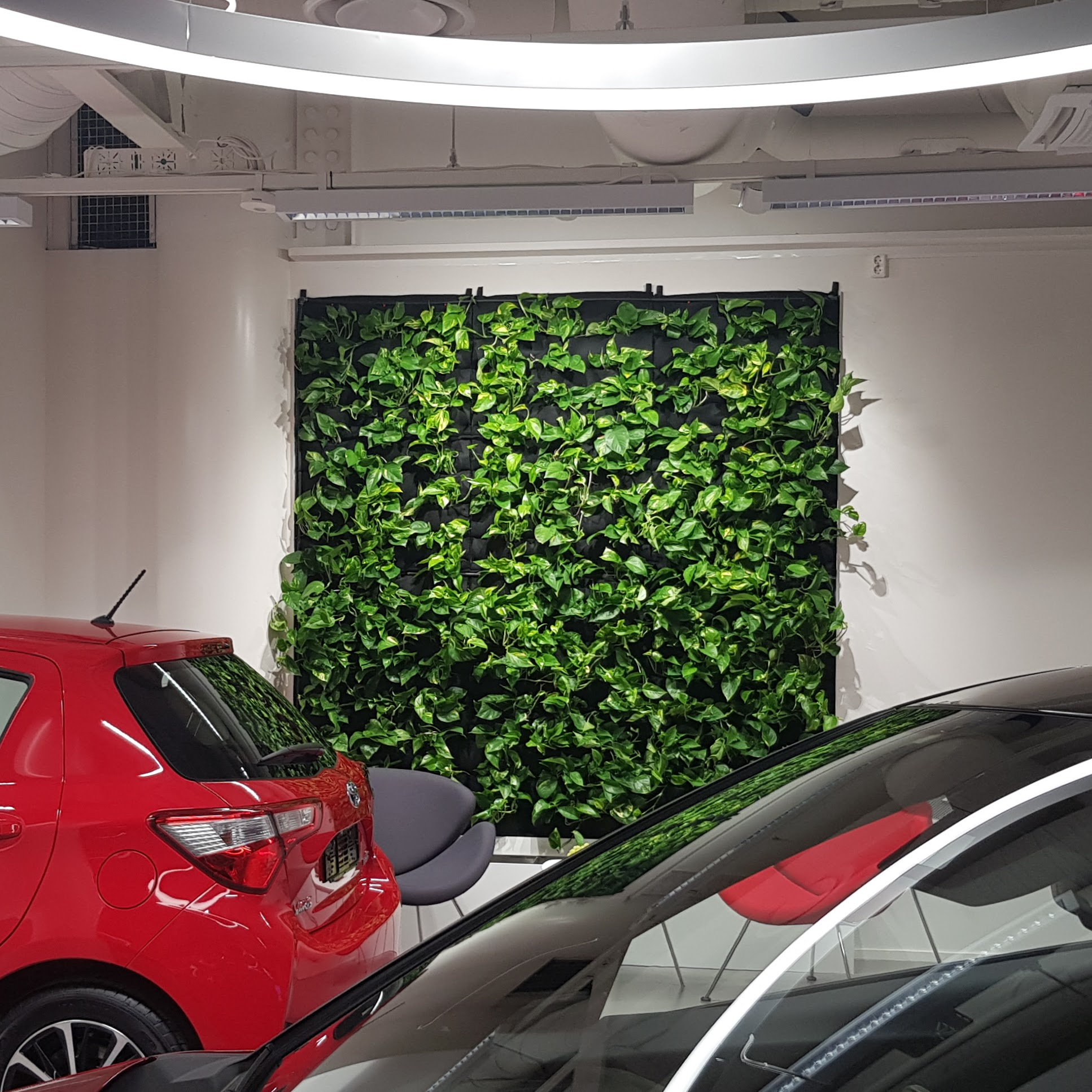 Florafelt Pockets Living Wall for Toyota Showroom by Pasi Lindberg Viherolo Oy Finland.