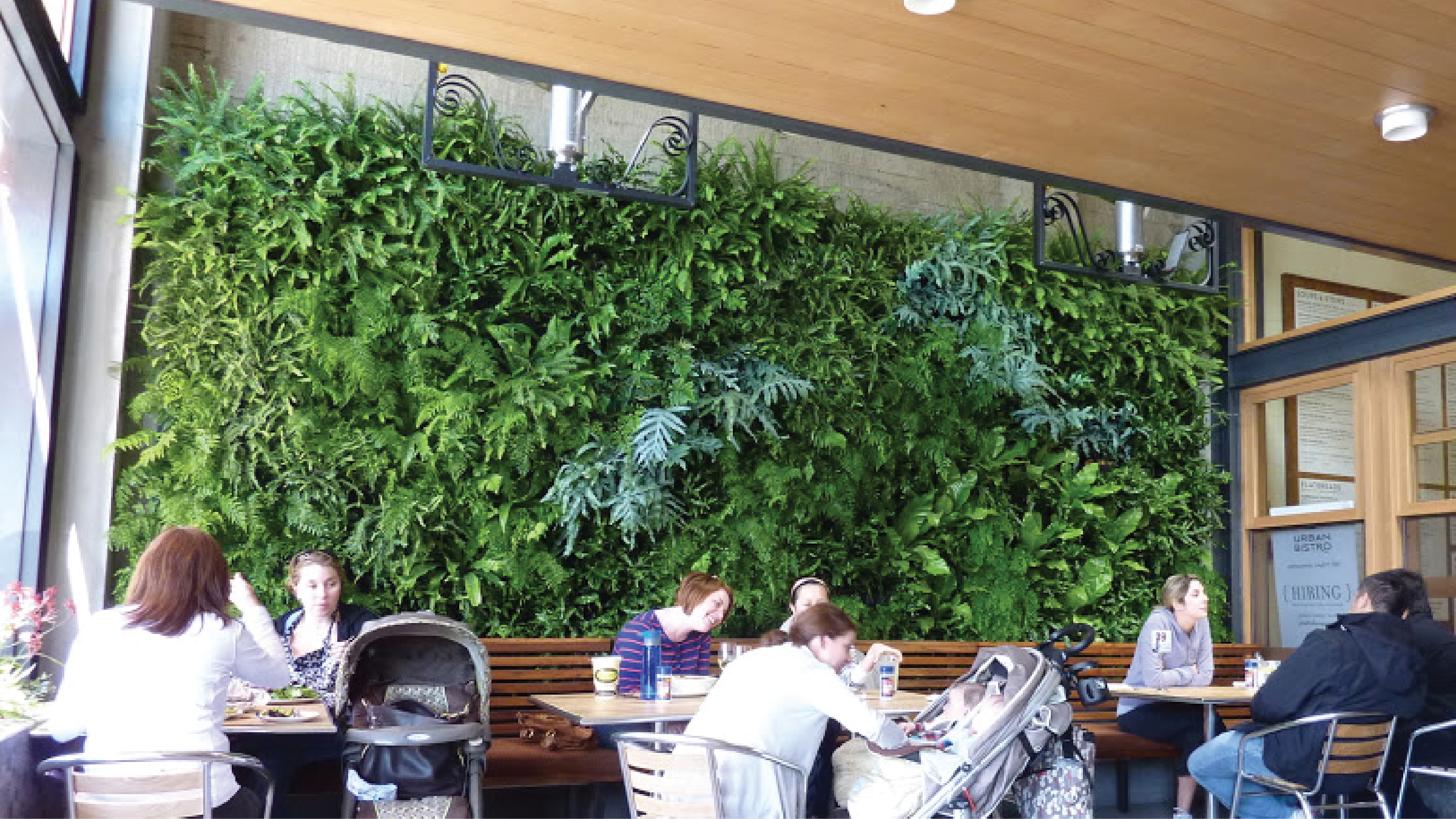 Chris Bribach | Plants On Walls | Urban Bistro