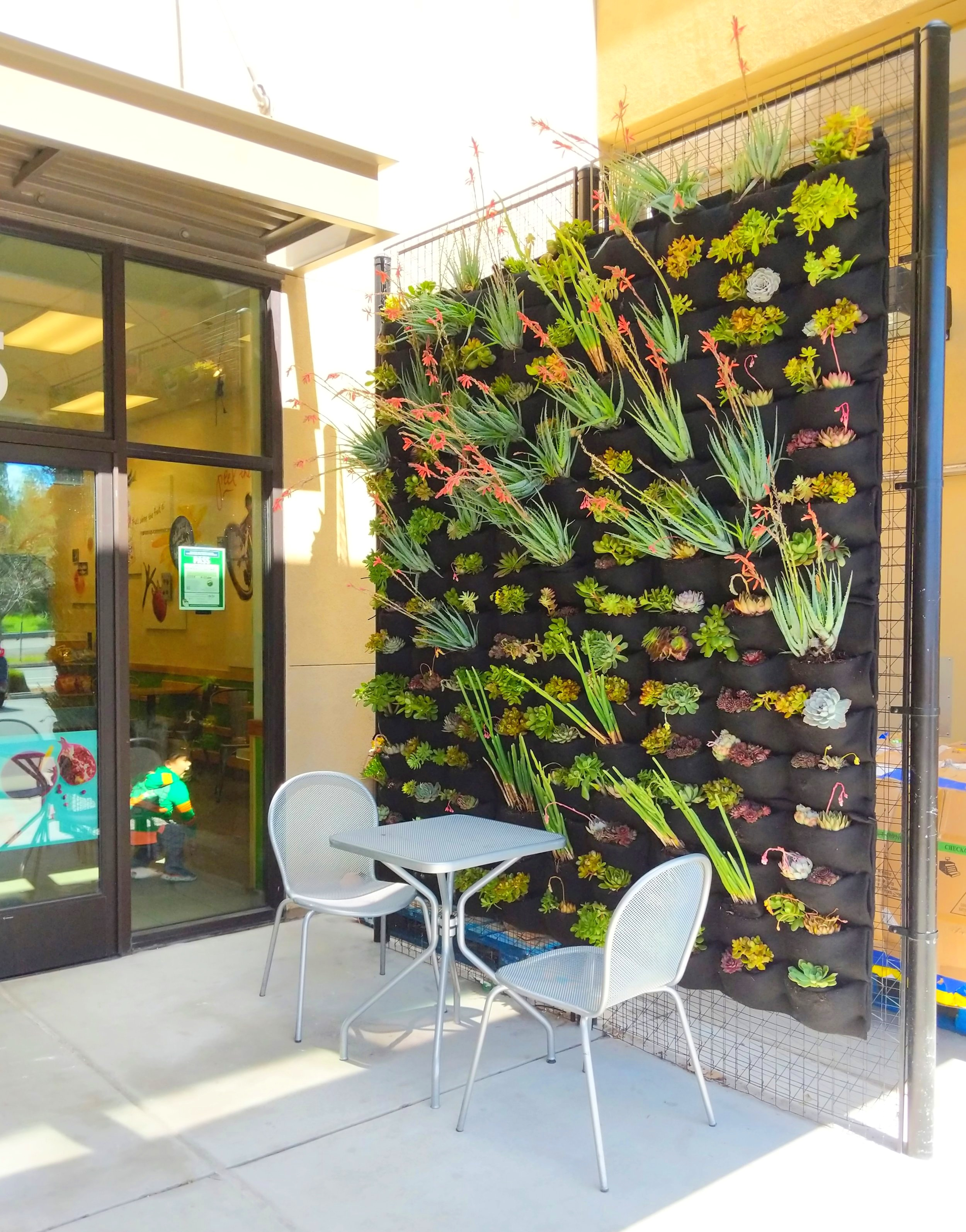 Florafelt Pocket Panel living wall by Hannah Construction for Jamba Juice, Martinez.
