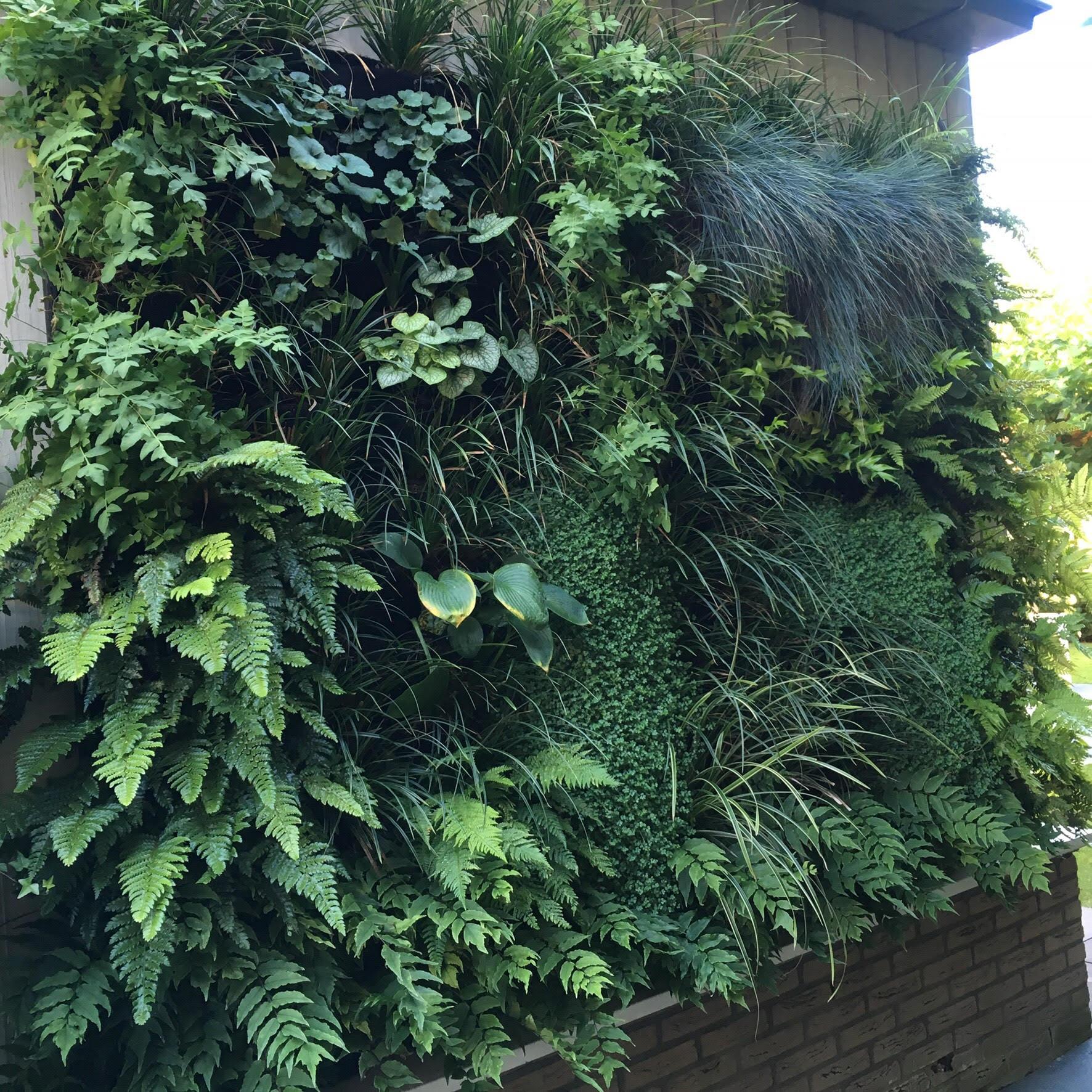 Florafelt living wall by Joris Bunschoten, The Vertical Planting Company Amsterdam.