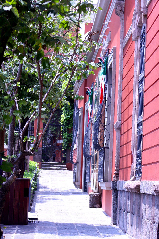 Amargura Street - Photo by  Yo Mariana