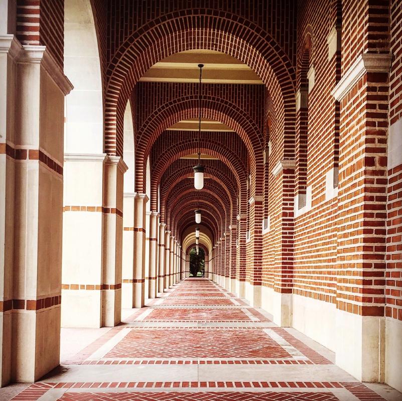 La Universidad de Rice -un Espacio de Expresión