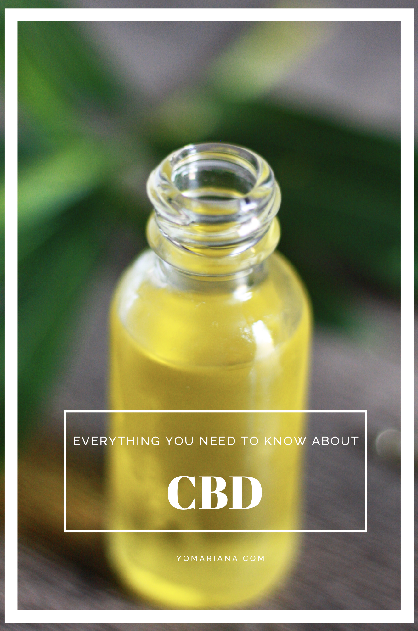 Everything you need to know about CBD at yomariana.com.png