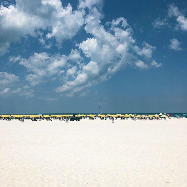 Celebratin' @elizts all weekend. 💙🐝 • • #shesgettingmarried #clearwaterbeach #clearwater #bachelorette #beach #florida #visitflorida #whitesand #bluesky #vacationmode #travel