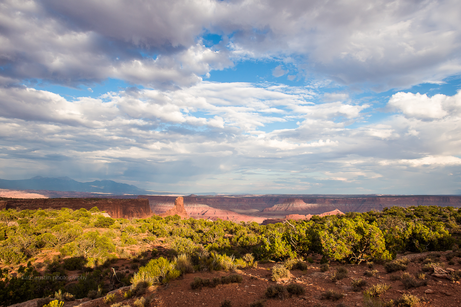 day37_murphytrail-canyonlands_moab201620160802-15.jpg