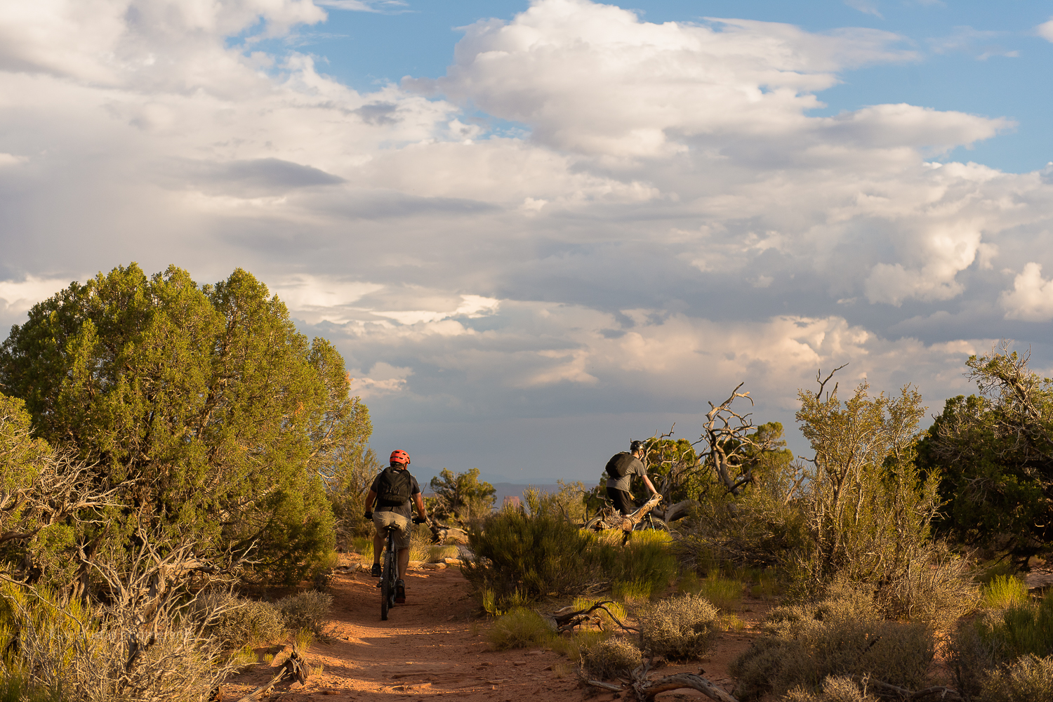 day37_murphytrail-canyonlands_moab201620160802-17.jpg