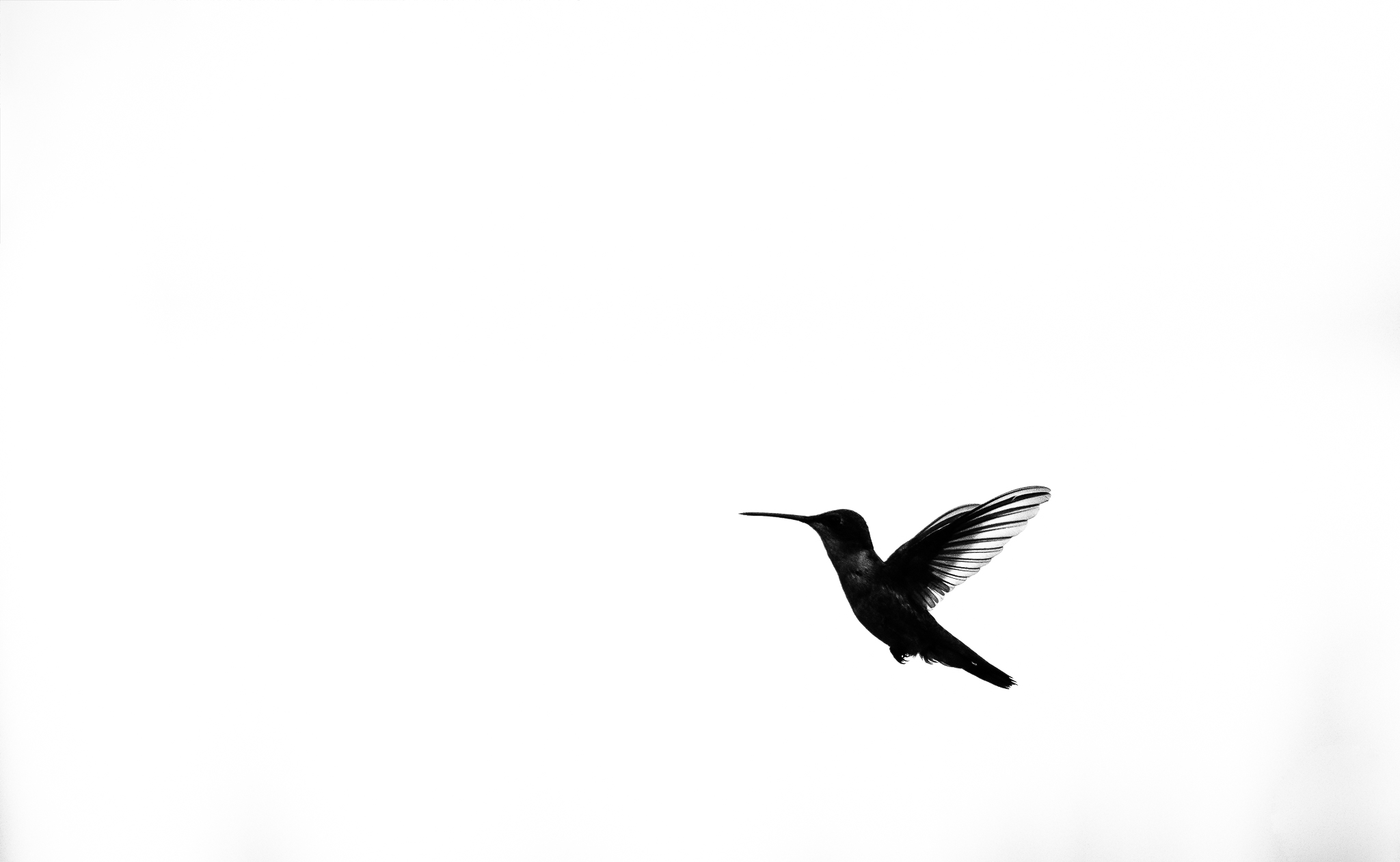 KAP_4743-Edit-2.jpg