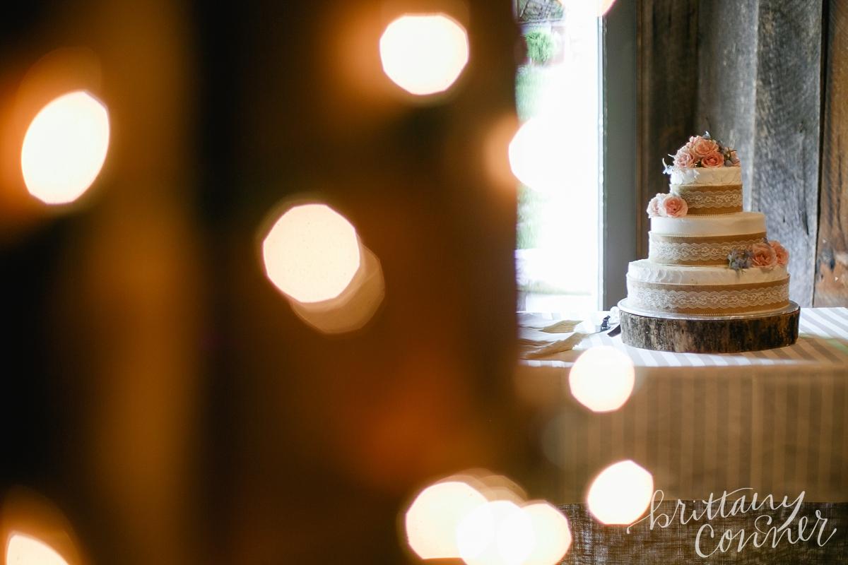 Knoxville Wedding Photographer_1461.jpg