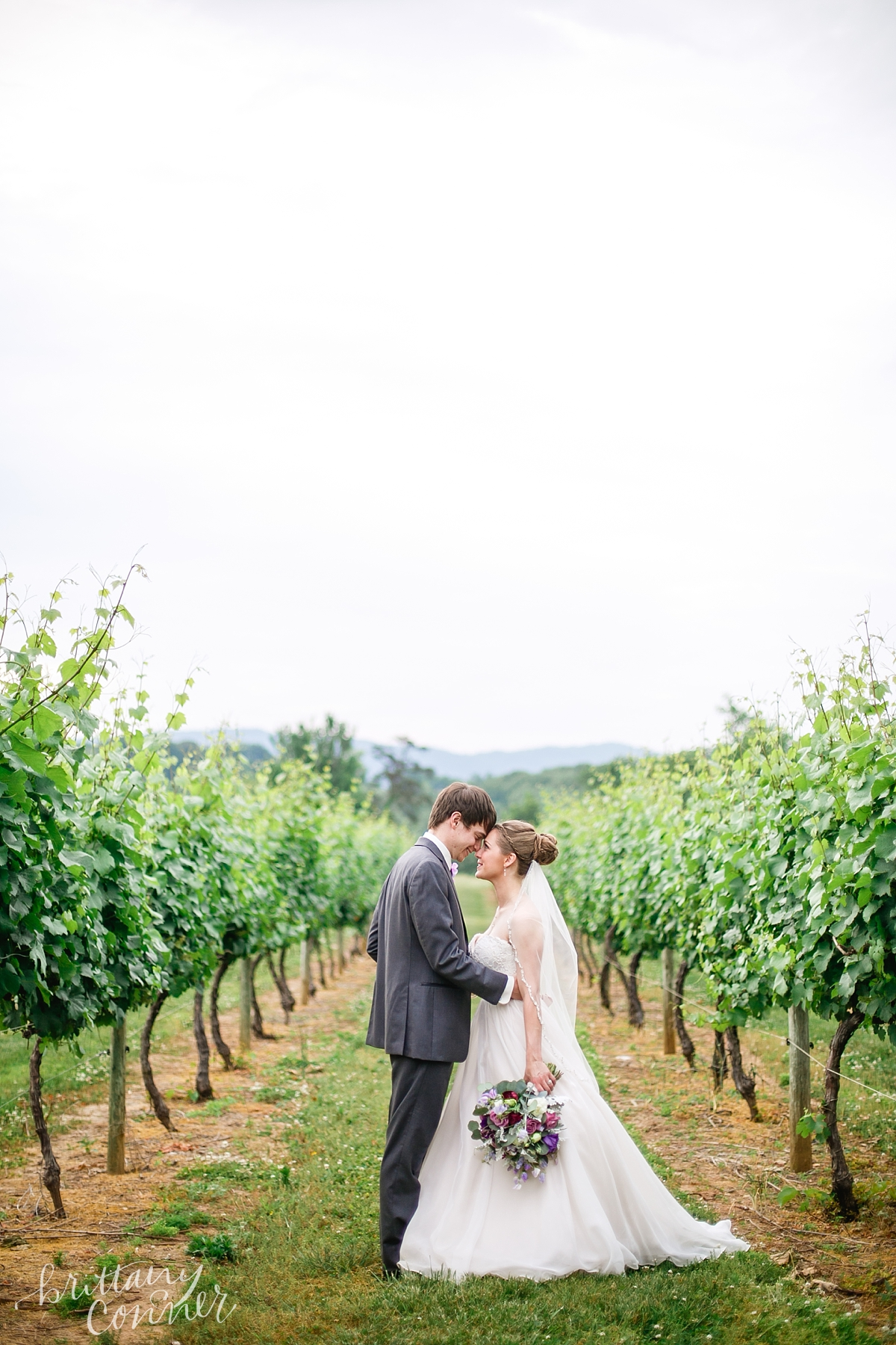 Knoxville Wedding Photographer_1646.jpg