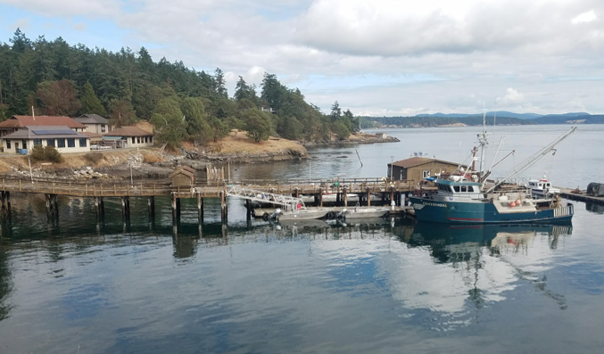 Ocean Memory: Friday Harbor Laboratories Workshop -September 24–29, 2017 - Co-organized and led by original PI's Tim Broderick, Daniel Kohn, Alyson Santoro, Margot Knight, Jody Deming, I was invited to attend this first session which was comprised of tutorials on cognitive memory, chemical communication in networked microbial communities, and genetic and epigenetic mechanisms, a day trip on a research vessel to observe how data was collected from the ocean, and brainstorm sessions to explore the dynamic quality of memory and what recall and forgetting in the ocean might mean. Initial ideas for possible collaborative projects were shared among the participants.