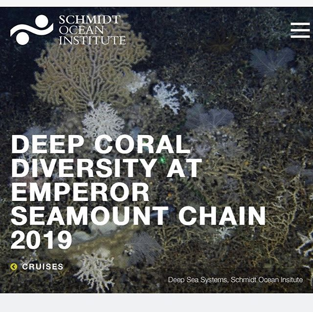 Thrilled to be joining the science team on this research cruise for 32 days in the Pacific Ocean as the Artist-At- Sea through the Schmidt Ocean Institute. See link in bio for details @schmidtocean @missleeleeleelee @asuherberger @asunow @asuschoolofart @asudesignschool @asu #schmidtocean #schmidtoceaninstitute #artandscience #sciart #contemporaryart #art #artdesign #asu