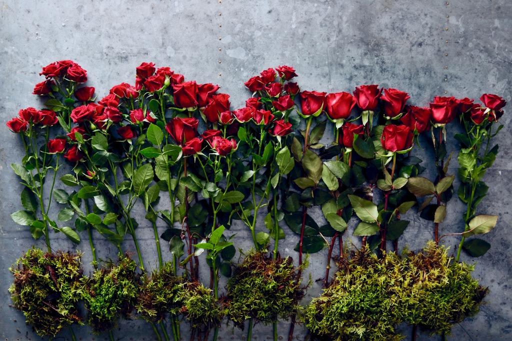 Roses_crop.jpg