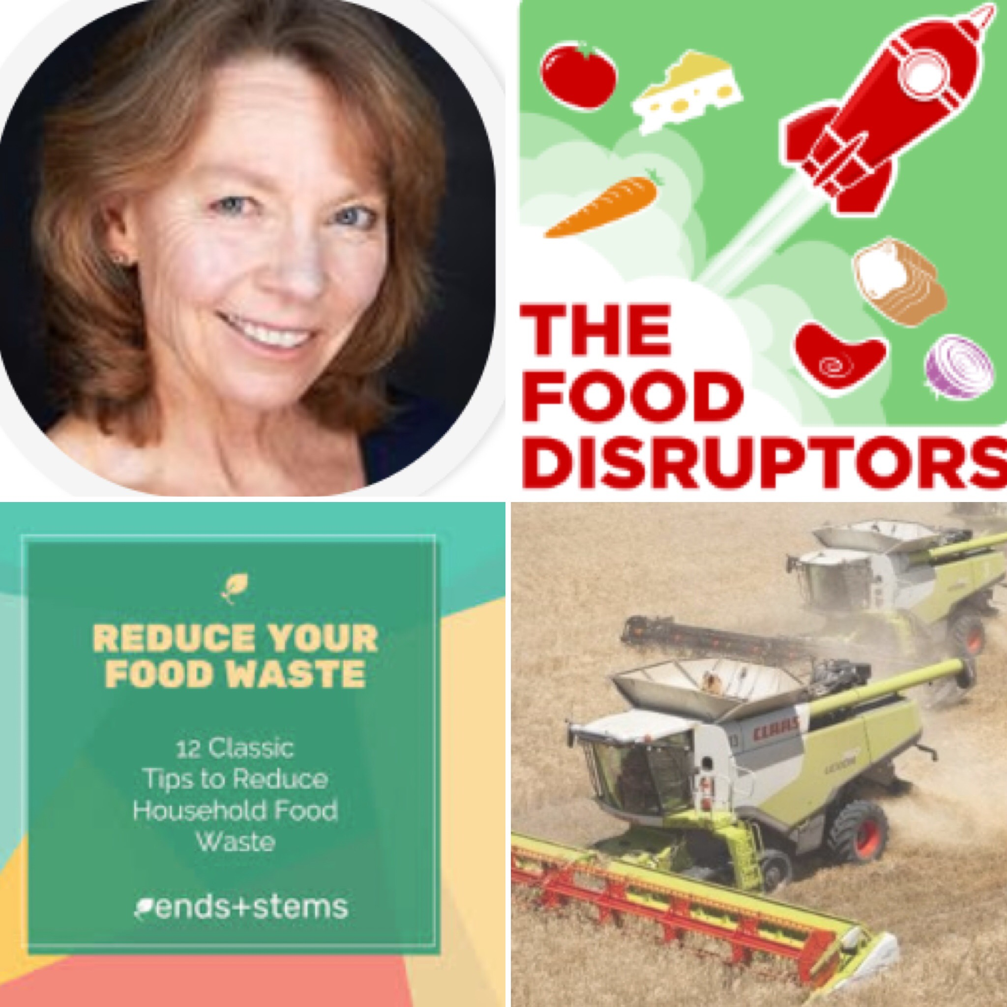 Theresa Brown co-disruptor,  The Food Disruptors
