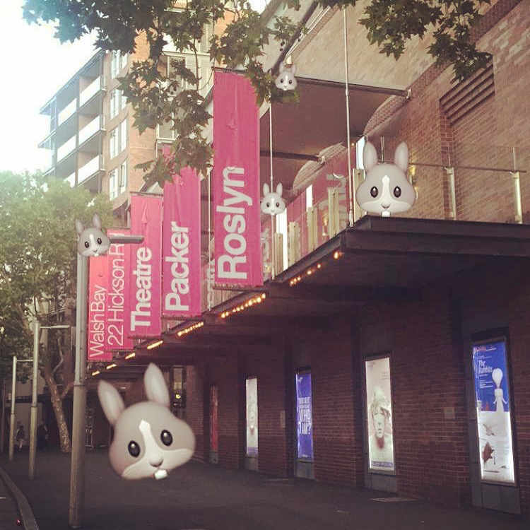 Hi Sydney. Here come The Rabbits!